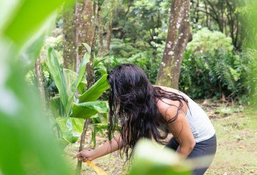 Megan Miguel '20 at Lyon Arboretum