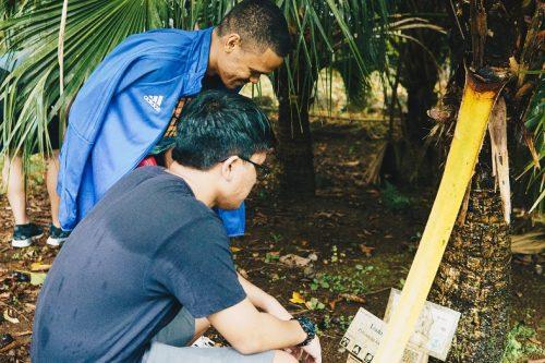 Students at the Lyon Arboretum