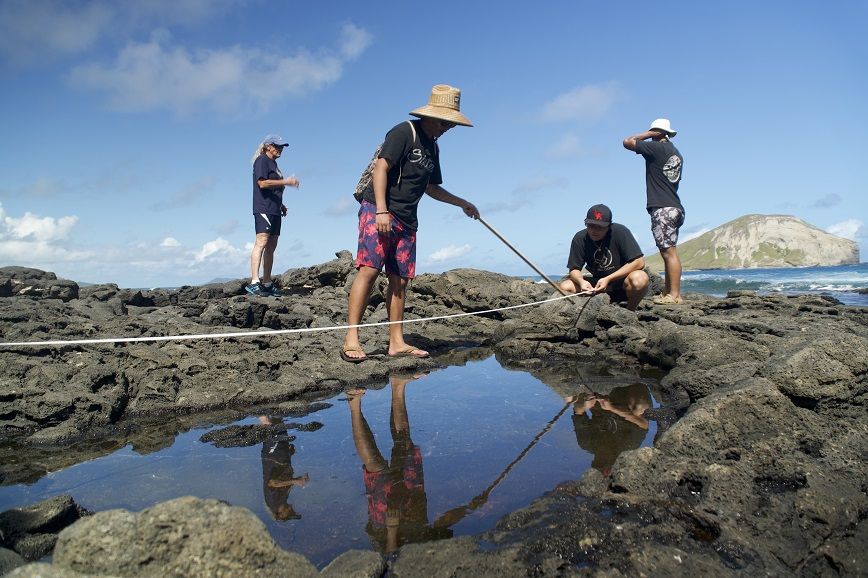 Students studying tidepools