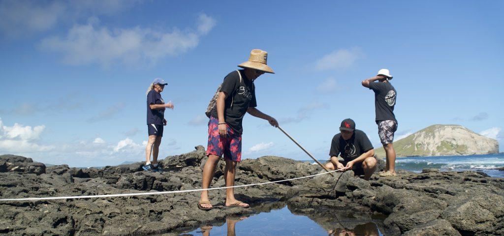Environmental students measuring reef at Makapuu Beach