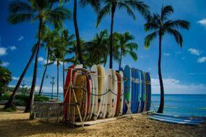 surf studies surfboard in surf rack
